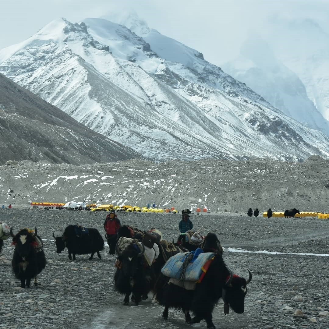 Herders at the Base Camp of Mount Everest.