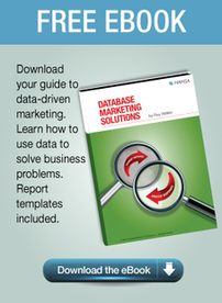 Database Marketing Solutions eBook Download