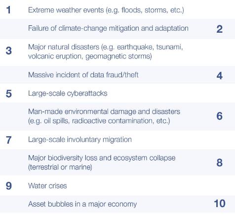 Top Ten Risks 1