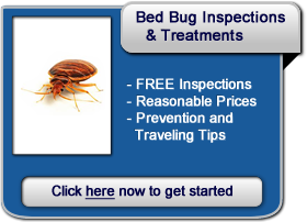 100 bed bug prices christmas coupon templates