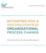 business-brief-risk-mitigation.png