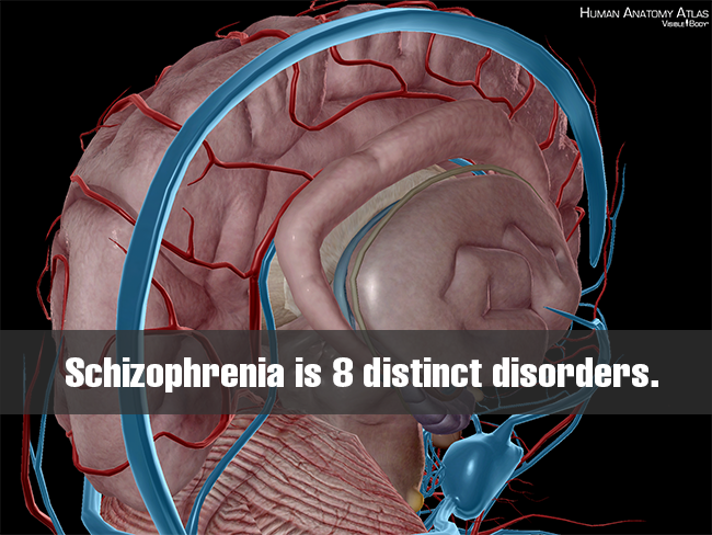 Schizophrenia-is-8-distinct-genetic-disorders