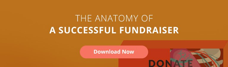 examples of successful nonprofit fundraising campaigns