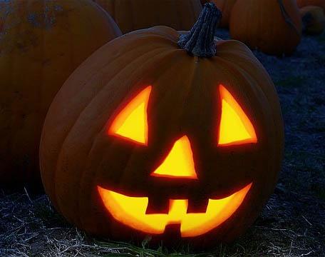 pumpkin-2853742_640.jpg