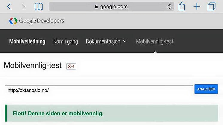 screenshot-google-pagespeed-test-oktan-oslo