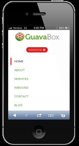 GuavaBox Mobile Marketing