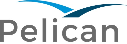 ACE Software Solutions rebrands to Pelican