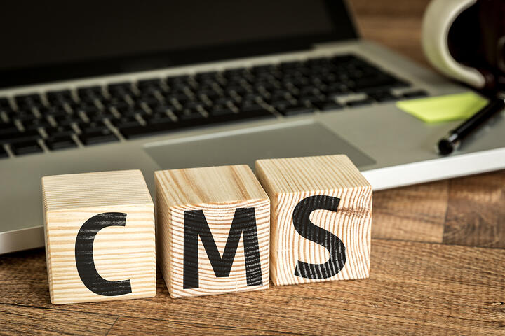 Factors When Choosing the Best Content Management System