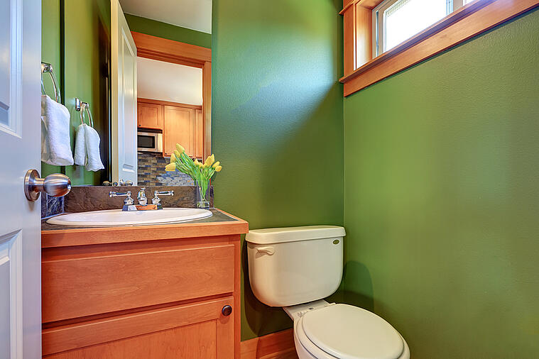 Tastefully Incorporate Green into Your Powder Room Design with These Tips