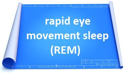 blueprint_paper_single_stage_REM.jpg