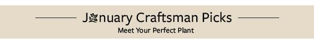 Craftsman Picks
