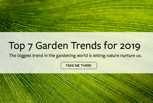 Top 7 Garden Trends for 2019