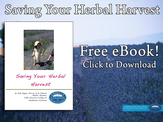 Herbs for Women: Coping with Women's Health Issues
