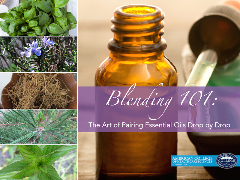 Blending 101: The Art of Pairing Essential Oils Drop by Drop