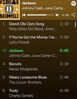 Playlist_-_Nashville_—_WILDSAM_🔊