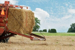 Before you bale and store your hay, it's important to check its moisture content!