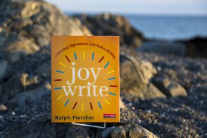 Joy Write Book Cover