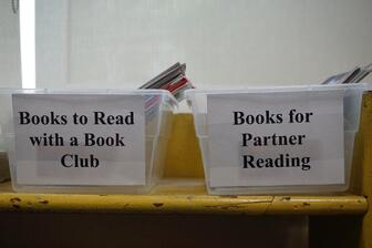 Mentor classroom library Small Group and Partnership Reading