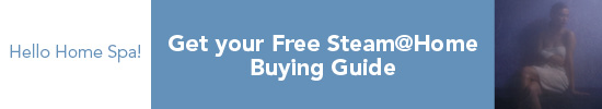 Steam@Home Guide