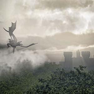 Dragon-image2