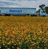 Walmart - SALT April 2020