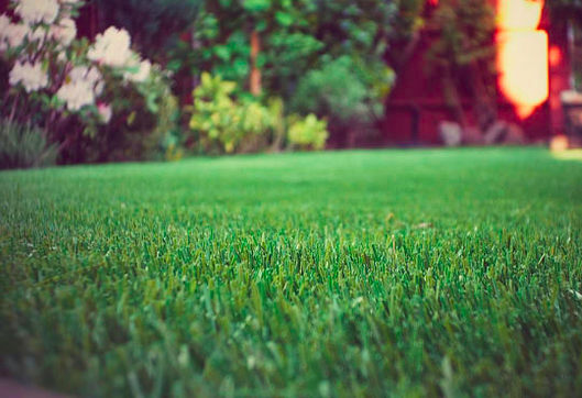 Artificial Grass For Commercial Properties resists wear and tear
