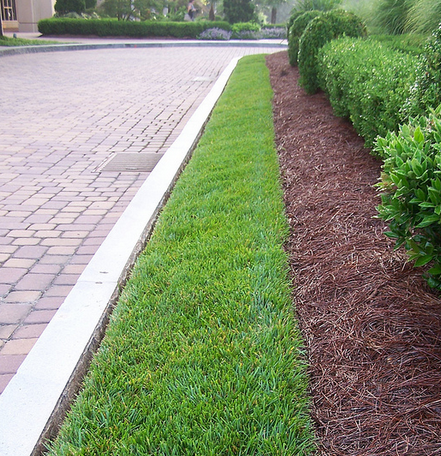 edging curb lines is part of weekly commercial landscape maintenance