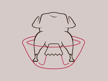 maishaenchen_illustration.jpg