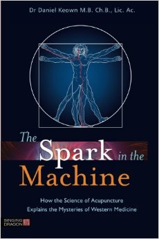 the_spark_in_the_machines_daniel_keown