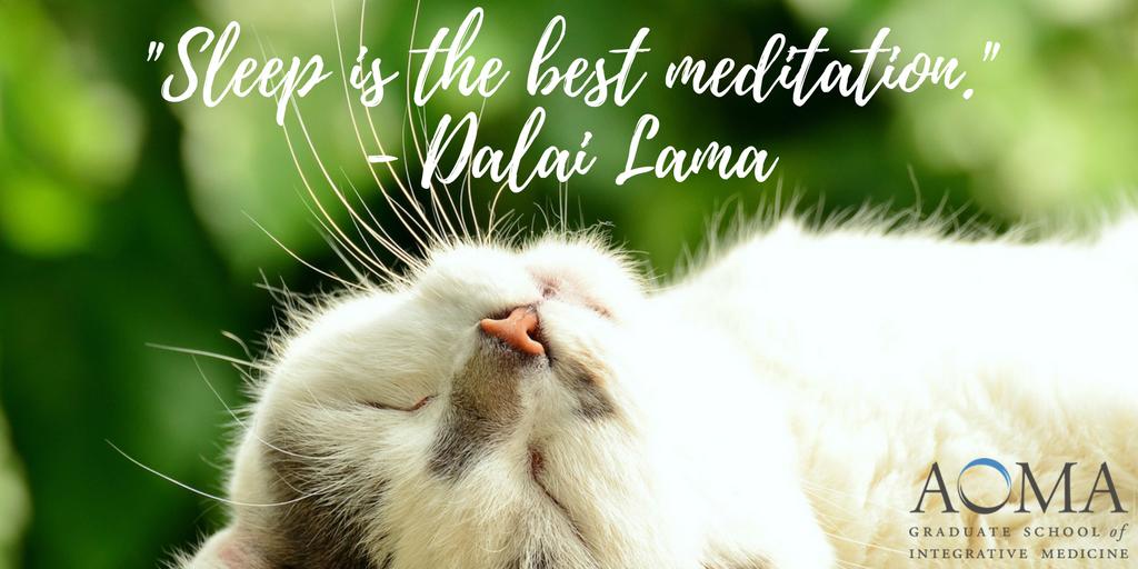 22Sleep is the best meditation22 - Dalai Lama.png