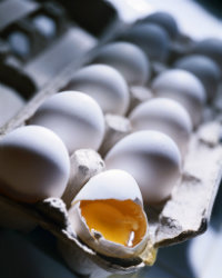 Customer_Service_Techniques_Egg_shell