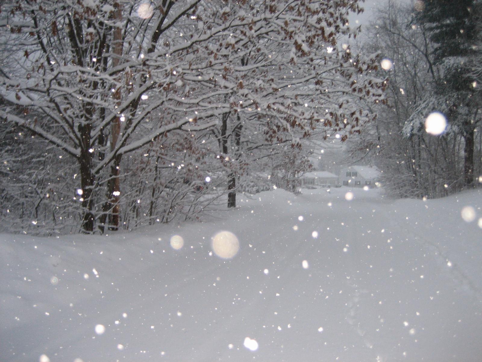 preparing_for_winter_weather.jpeg