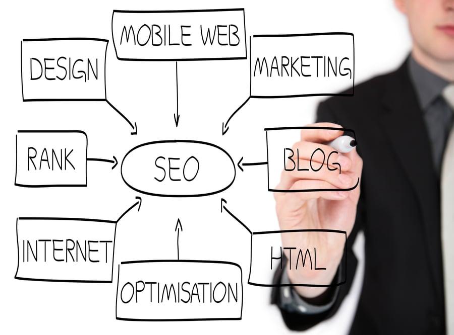 SEO www.paladindigitalmarketing.com
