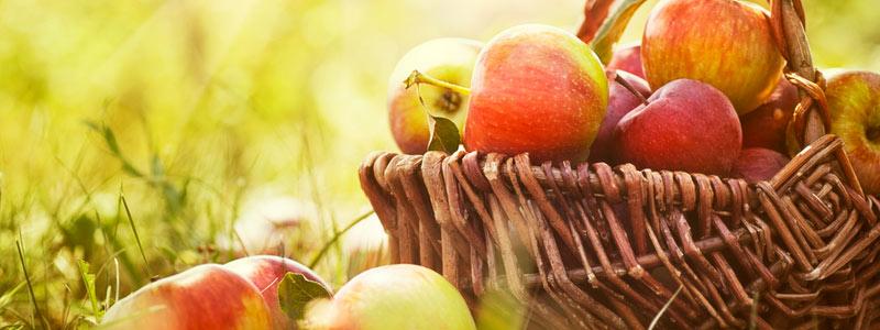 manzana-cwp