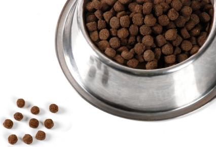 alimento para perro y gato