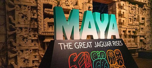 Maya Exhibiton