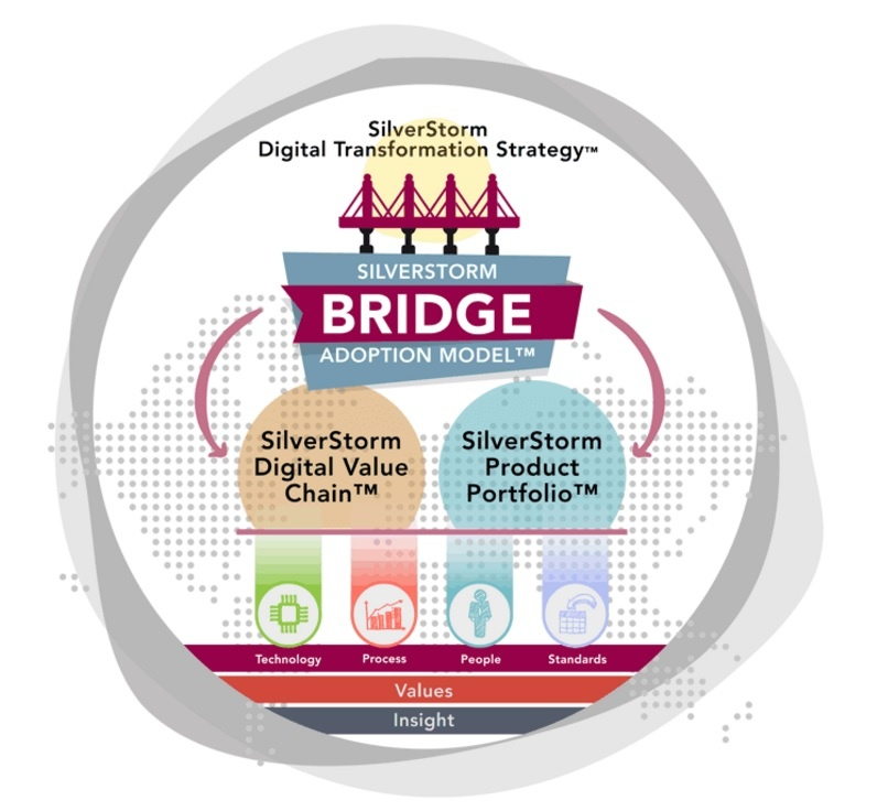SilverStorm Bridge Adoption Model.jpg
