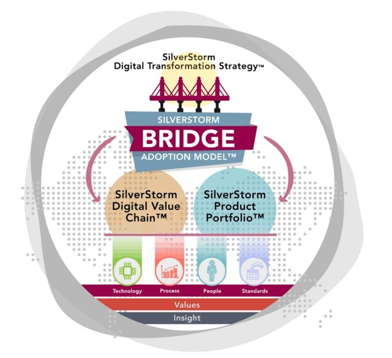 SilverStorm Bridge Adoption Model.jpg