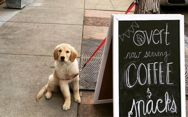 best coffee wash park denver 3