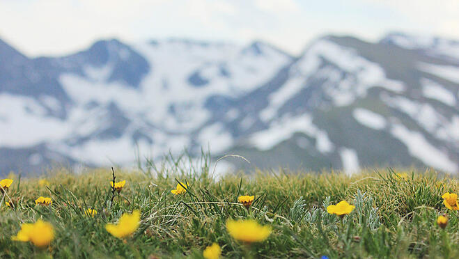 things to do in denver in spring