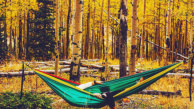 things to do in fall denver