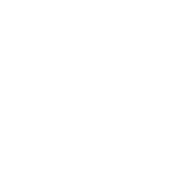 SynovusBank-White.png