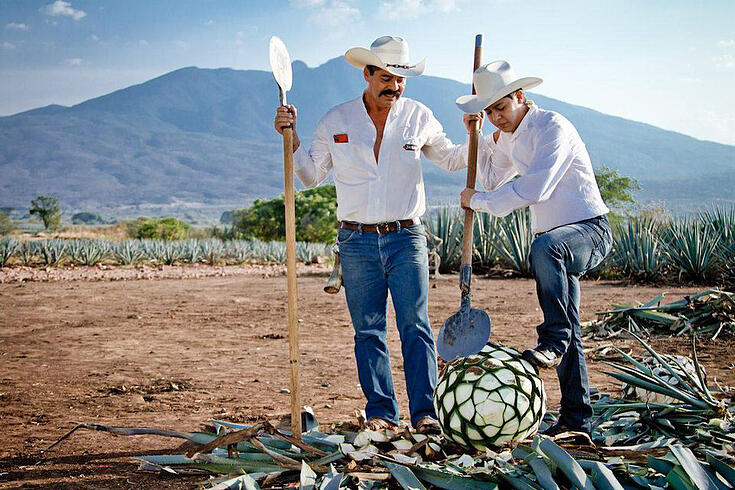 CRAFTING QUALITY TEQUILA