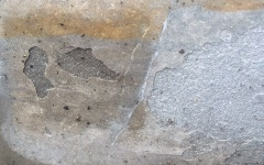 Gris Foussana limestone frost damage
