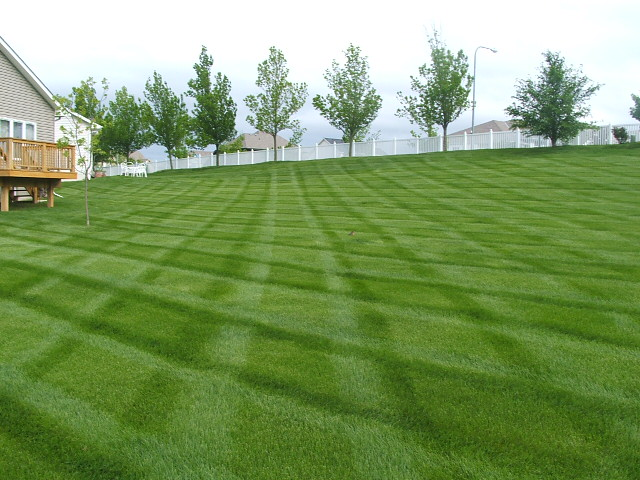 lawn care omaha