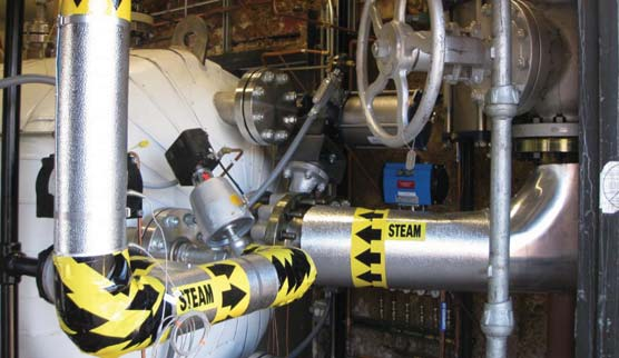 Steam delivery system of FAI LOCA chamber