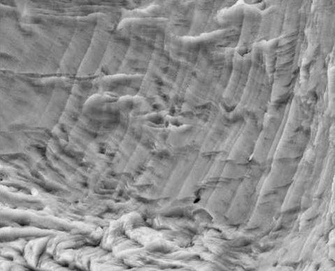 Fatigue striations in austenitic stainless steel