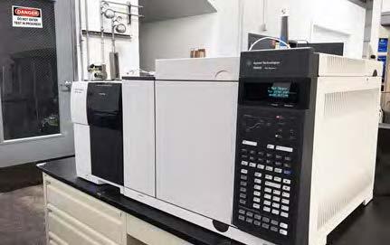 Flammability test gas chromatograph