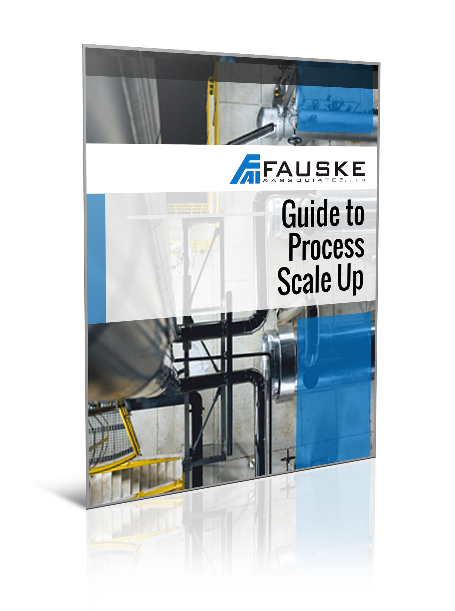 FAI Guide to Process Scale Up