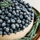 Paleo and Vegan Blueberry Cheesecake